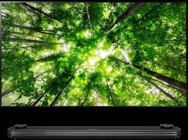OLED TV W8